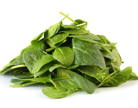 the spinach leaf essay Below is an essay on spinach from anti essays, your source for research papers, essays, and term paper examples research paper on spinach - biocollectorscom research paper on spinach research paper: spinach leaf disk lab report.